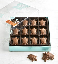 V Chocolate Peanut Butter Filled Turtles  pc