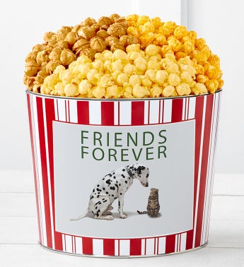 Tins With Pop Friends Forever Dog And Cat